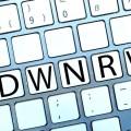 Die Grafik zeigt das Logo der Initiative Digitale Wirtschaft NRW: Buchstaben der Tasten DWNRW und das NRW Wappen