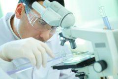 Das Foto zeigt einen Forscher an einem Mikroskop.
