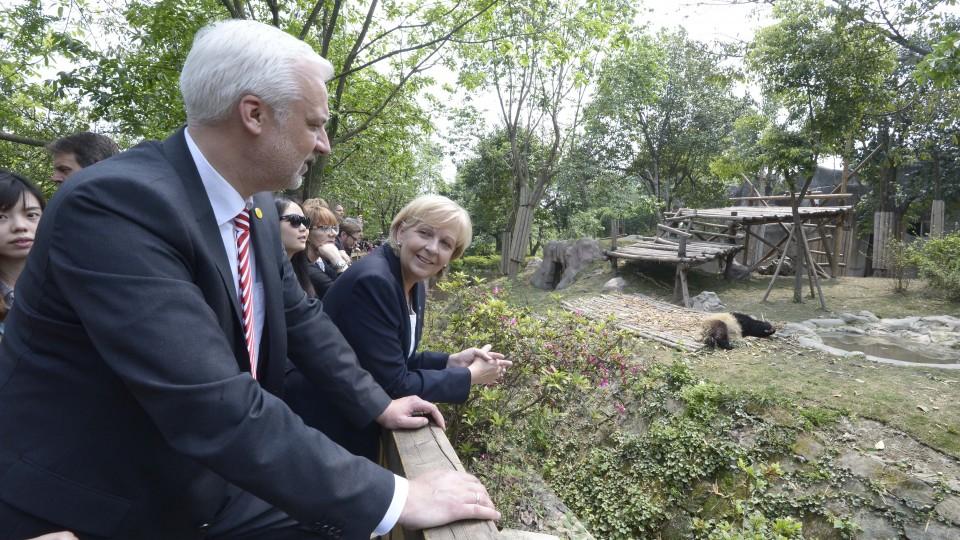 Ministerpräsidentin Hannelore Kraft und Wirtschaftsminister Garrelt Duin schauen auf Pandas im Gehege
