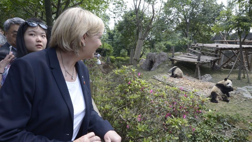 Ministerpräsidentin Hannelore Kraft schaut auf Pandas im Gehege