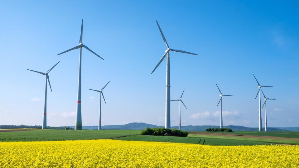 Bild Windräder auf gelber Wiese